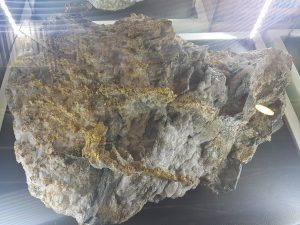 High grade gold in rock from Australia